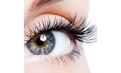 For Growth of Eyelashes / For Eyes (5)